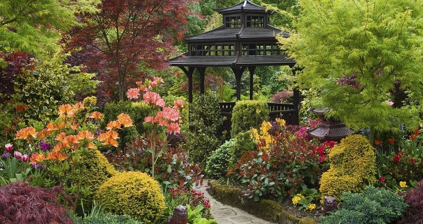 Creating a Japanese-Inspired Garden